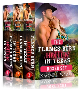Flames BHiT Boxed Set sample