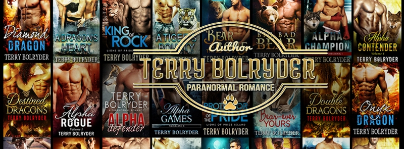 Terry Bolryder FB Banner Design