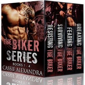 the-biker-series-1-4-3d-s