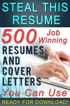 Steal This Resume SMALL